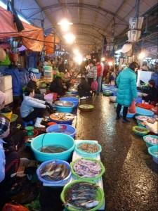 Fischmarkt // 鱼市场