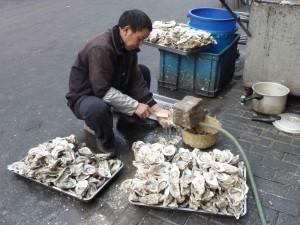 Austern waschen // 洗牡蛎